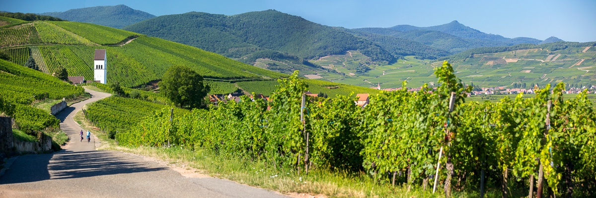 Cycling holidays in Alsace